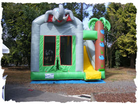 elephant bouncer slide